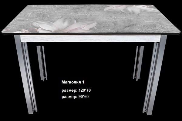 Стол нераздвижной-6