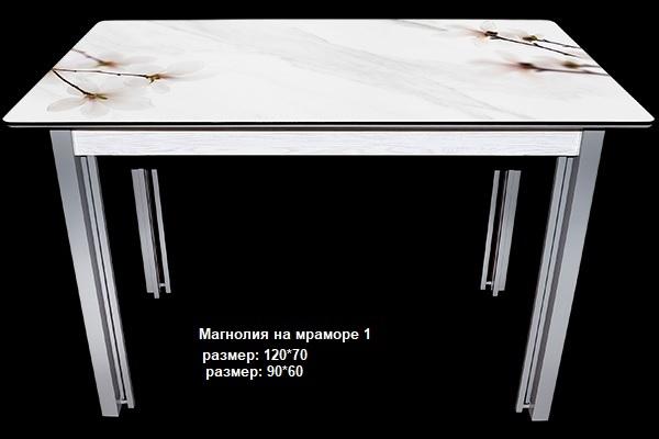 Стол нераздвижной-4