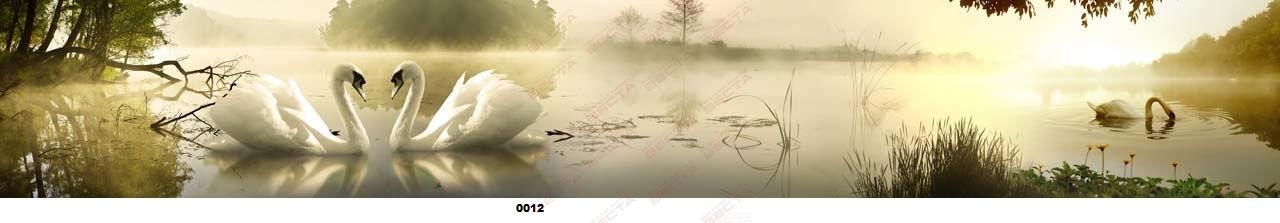 Фартуки Природа,пейзажи-19