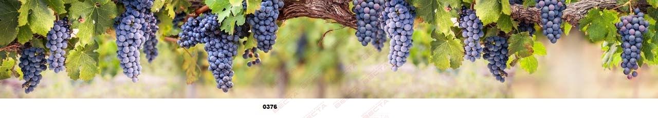 Фартуки Еда, напитки,фрукты,ягоды-7