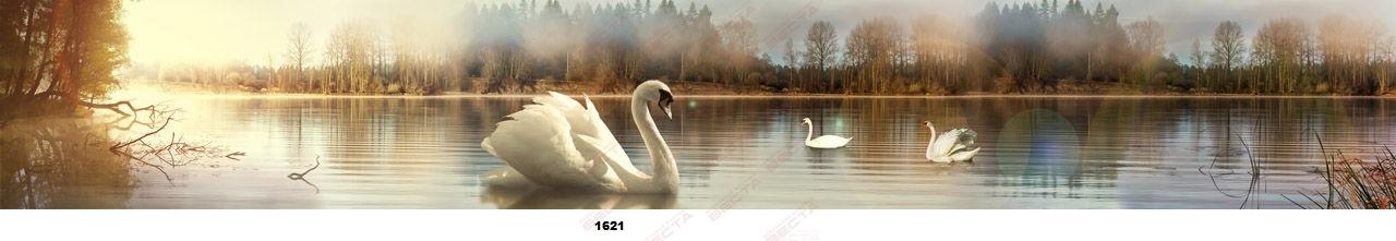 Фартуки Природа,пейзажи-10