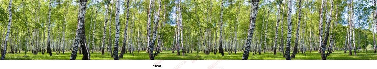 Фартуки Природа,пейзажи-9
