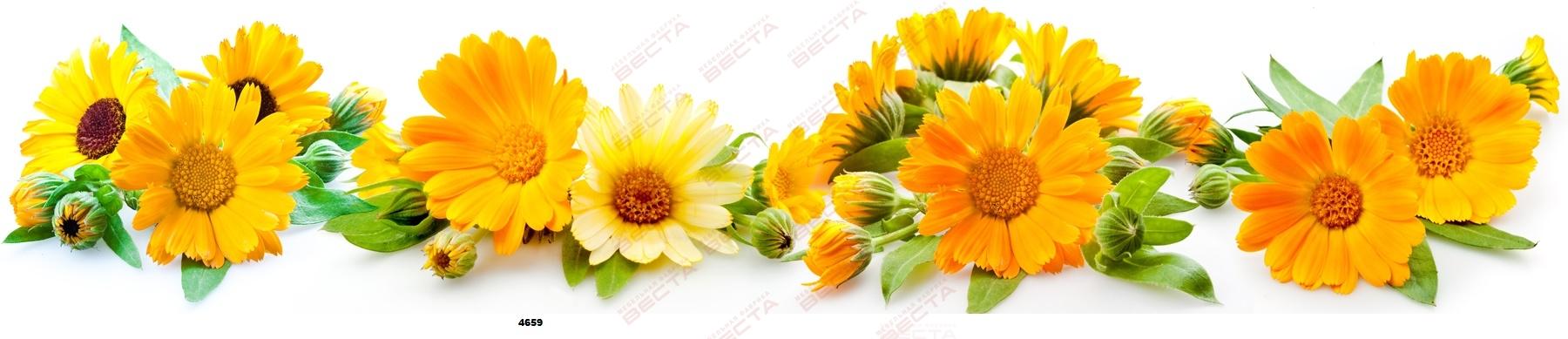 Фартуки Цветы-14