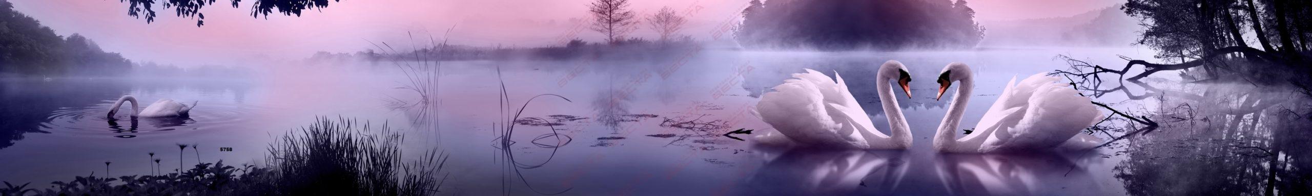 Фартуки Природа,пейзажи-2